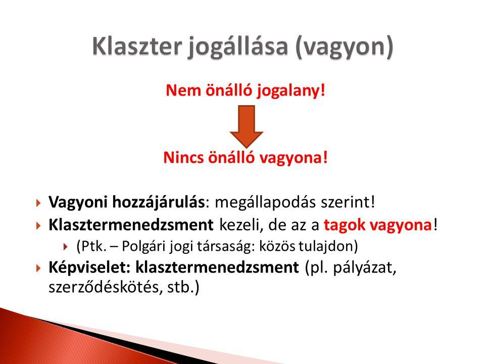 Nem önálló jogalany! Nincs önálló vagyona!  Vagyoni hozzájárulás: megállapodás szerint!  Klasztermenedzsment kezeli, de az a tagok vagyona!  (Ptk.