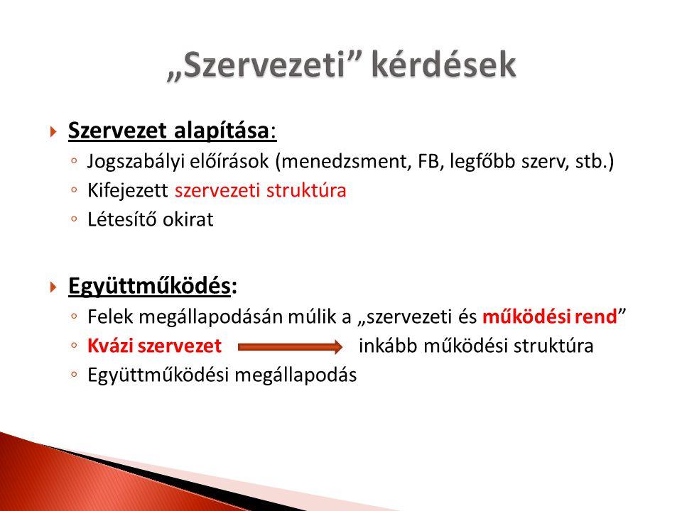 """Legfőbb """"szerv (tagok összessége/gyűlése) Klasztermenedzsment szervezet Operatív menedzser (klasztermenedzser)"""