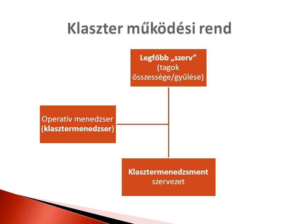 Döntéshozatal ◦ Tagok: egyszerű többség/minősített többség ◦ Módja: jelenlét/írásban  Ügyvitel (klasztermenedzsment) ◦ Döntések végrehajtása ◦ Tagok képviselete  Tagfelvétel ◦ Megállapodás alapján (szavazás szerint)  Tagkizárás ◦ Feltételeit, eljárásrendjét szabályozni kell  Felelősség ◦ Jogalanyiság hiánya!
