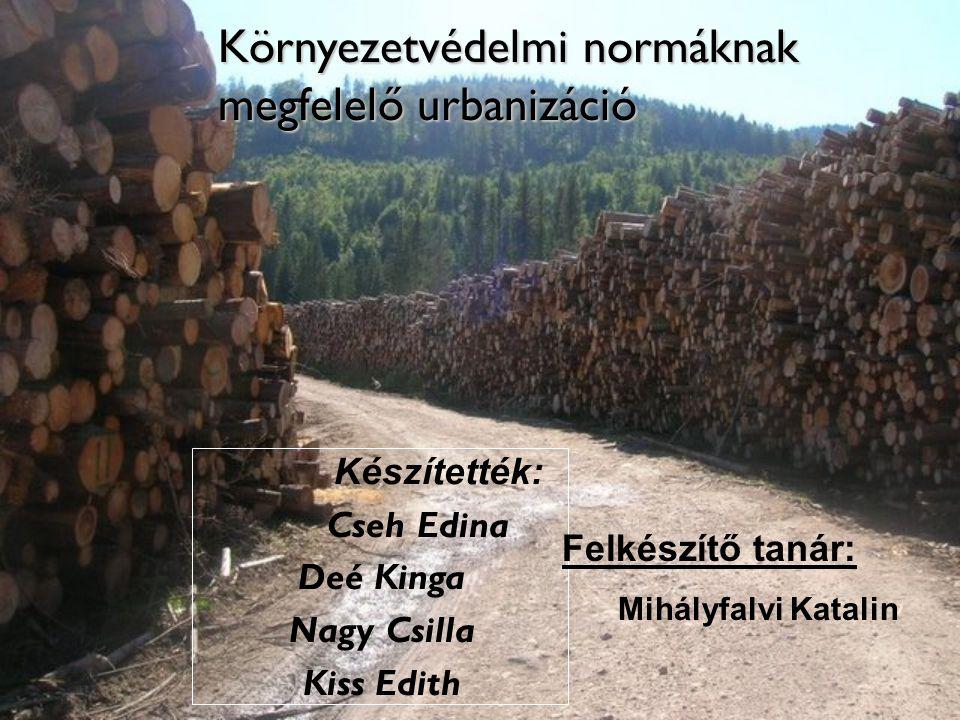 Környezetvédelmi normáknak megfelelő urbanizáció Készítették: Cseh Edina Deé Kinga Nagy Csilla Kiss Edith Felkészítő tanár: Mihályfalvi Katalin