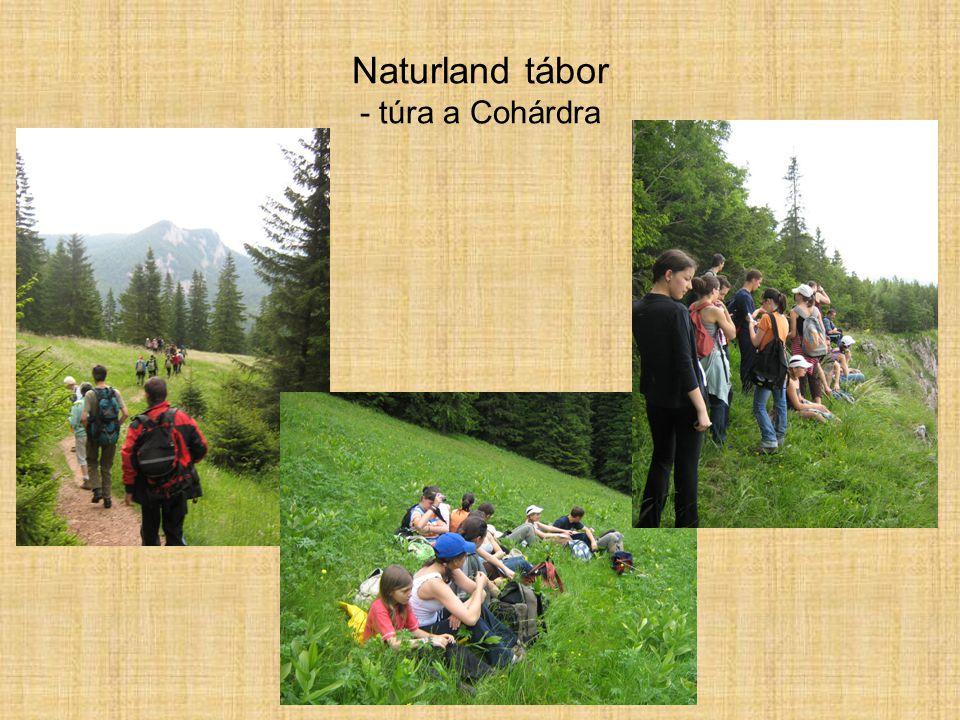 Naturland tábor - túra a Cohárdra