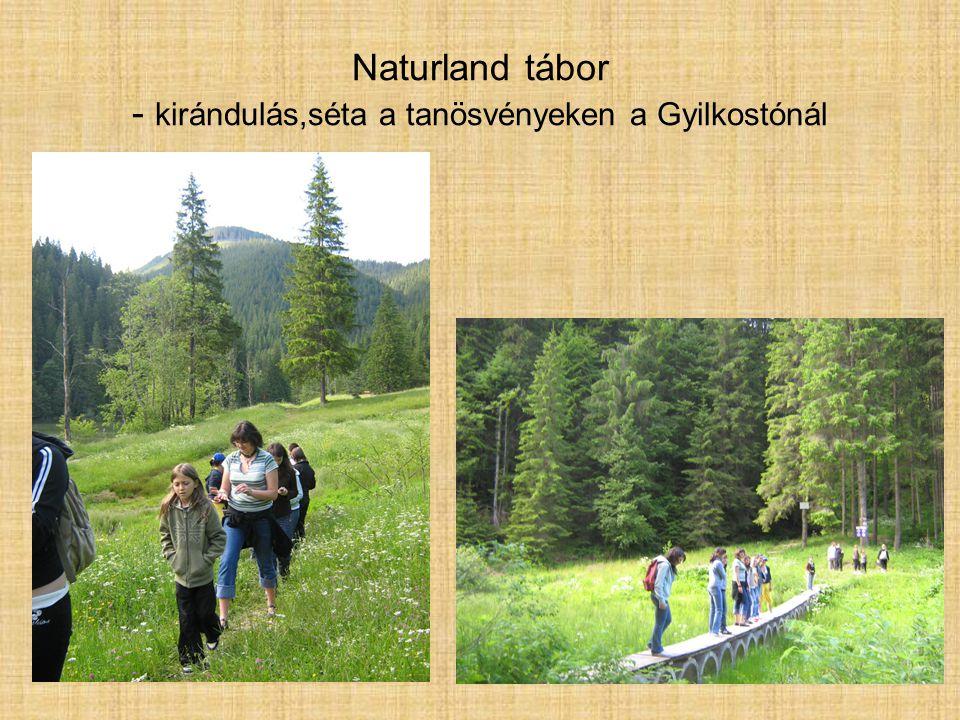 Naturland tábor - a tó környezete