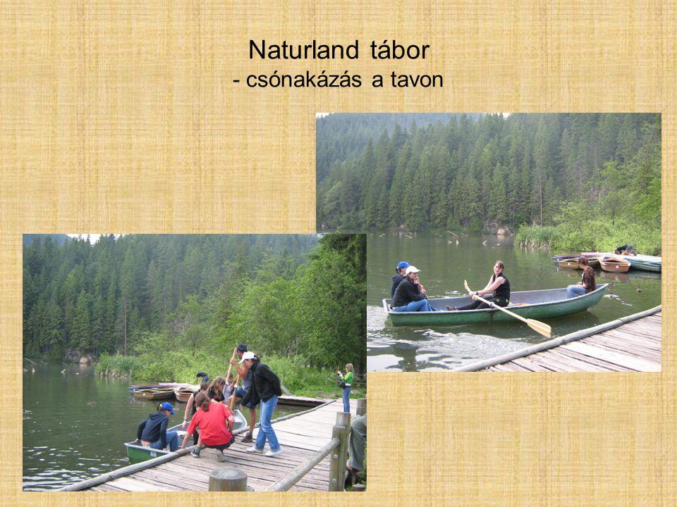Naturland tábor - csónakázás a tavon
