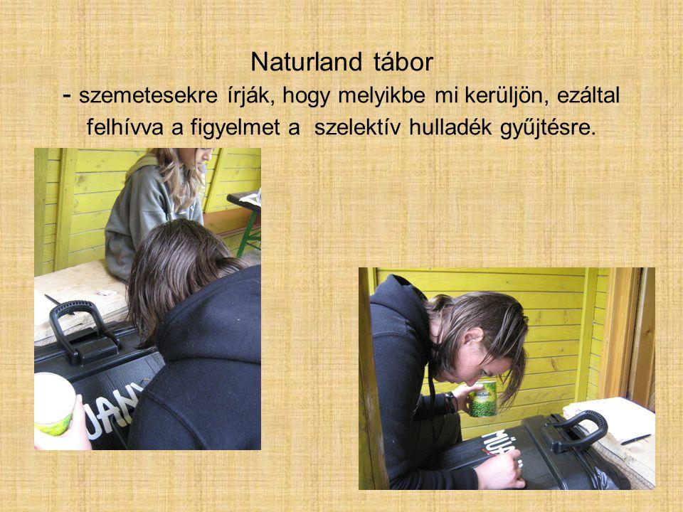 Naturland tábor - szemetesekre írják, hogy melyikbe mi kerüljön, ezáltal felhívva a figyelmet a szelektív hulladék gyűjtésre.
