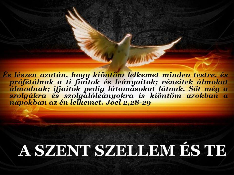 Alapelvek Ismeret A lelki ajándékokra nézve pedig nem akarom, atyámfiai, hogy tudatlanok legyetek.