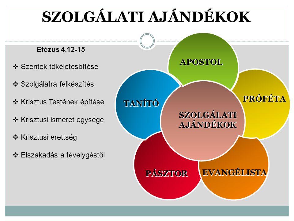 SZOLGÁLATI AJÁNDÉKOK APOSTOL PRÓFÉTA TANÍTÓ PÁSZTOR EVANGÉLISTA Efézus 4,12-15  Szentek tökéletesbítése  Szolgálatra felkészítés  Krisztus Testének építése  Krisztusi ismeret egysége  Krisztusi érettség  Elszakadás a tévelygéstől