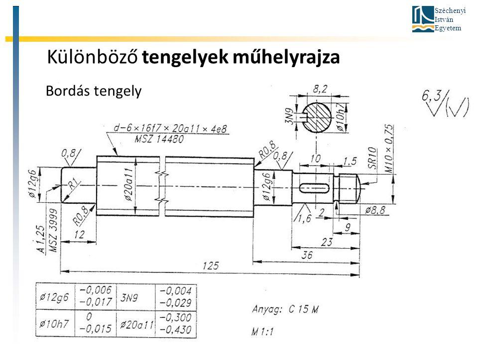 Széchenyi István Egyetem Különböző tengelyek műhelyrajza Bordás tengely