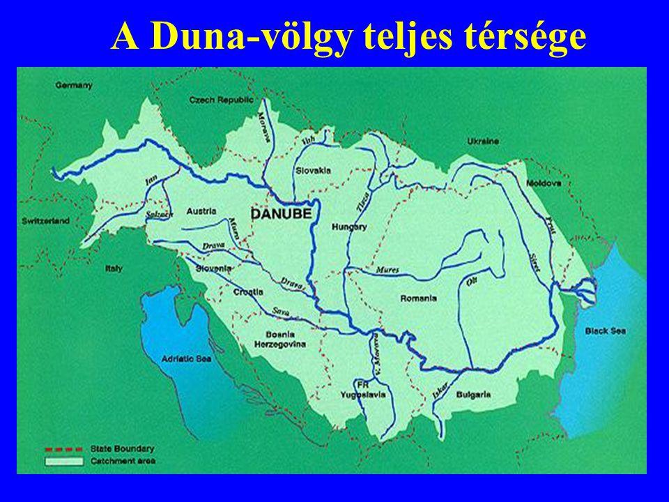 """A Duna Projekt Portfolió céljai A folyó mentén indított vagy tervezett közösségi és magánerős nagyberuházásokat egységes formában jelenítse meg Képet adjon a Duna mente fejlesztéseinek trendjeiről és felrajzolja a térség aktuális jövőképét A Duna menti közösségek kihívásokra adott különböző válaszainak megjelenítése A közös stratégiai gondolkodás elindítása, a projektgazdák stratégiai párbeszédbe történő bevonása, érdekeltté tétele Azon projektek megtalálása, amelyek a Duna-völgy minden közössége számára haszonnal járnak, és amelyekhez a legnagyobb magánerőt megmozgatva tudnak kötődni a helyi források + """"zászlós-hajó projektek"""