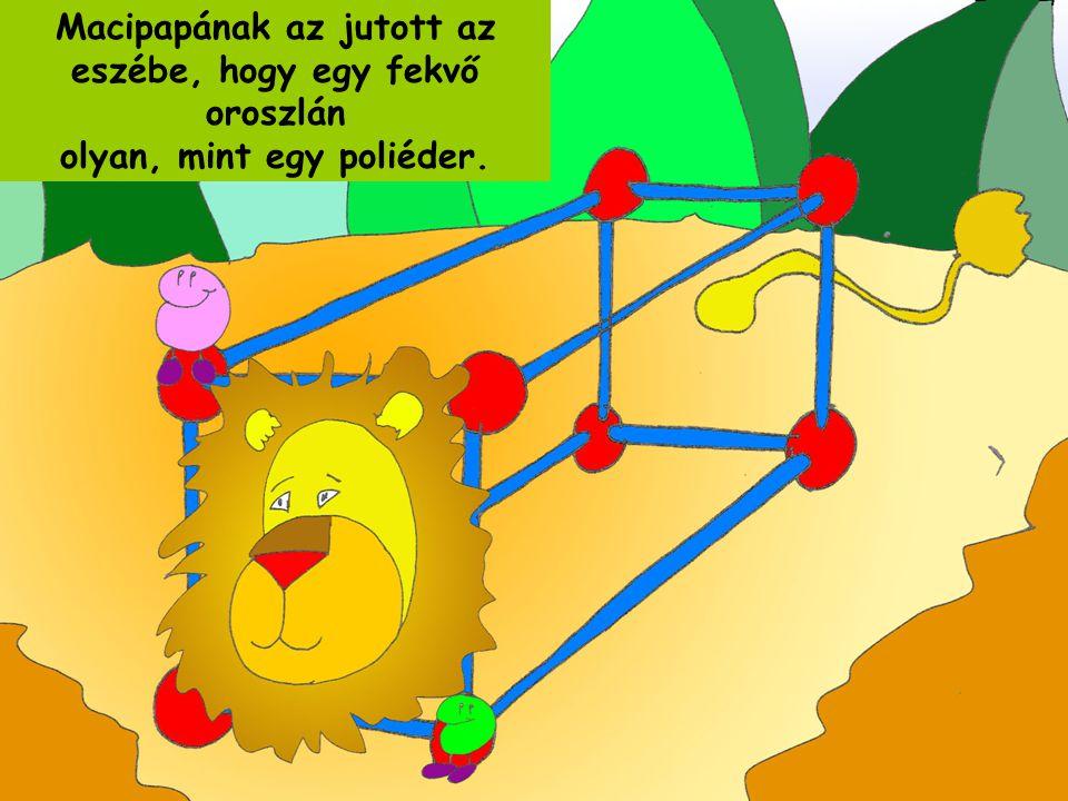 Macipapának az jutott az eszébe, hogy egy fekvő oroszlán olyan, mint egy poliéder.