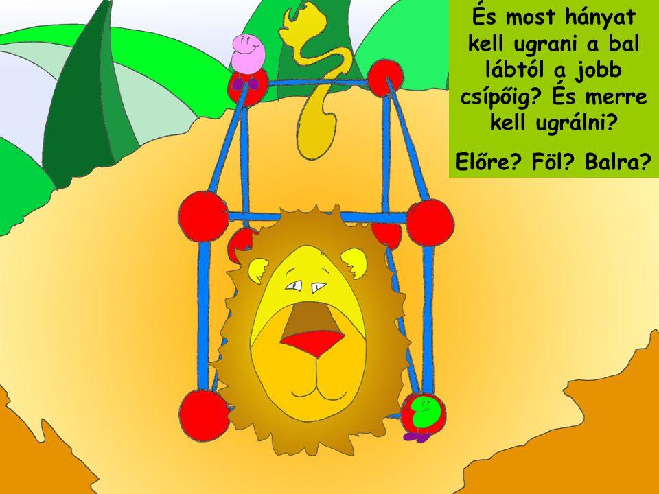 A kismaciknak tetszett a poliéder-oroszlán, és ők is adtak fel egymásnak kérdéseket.