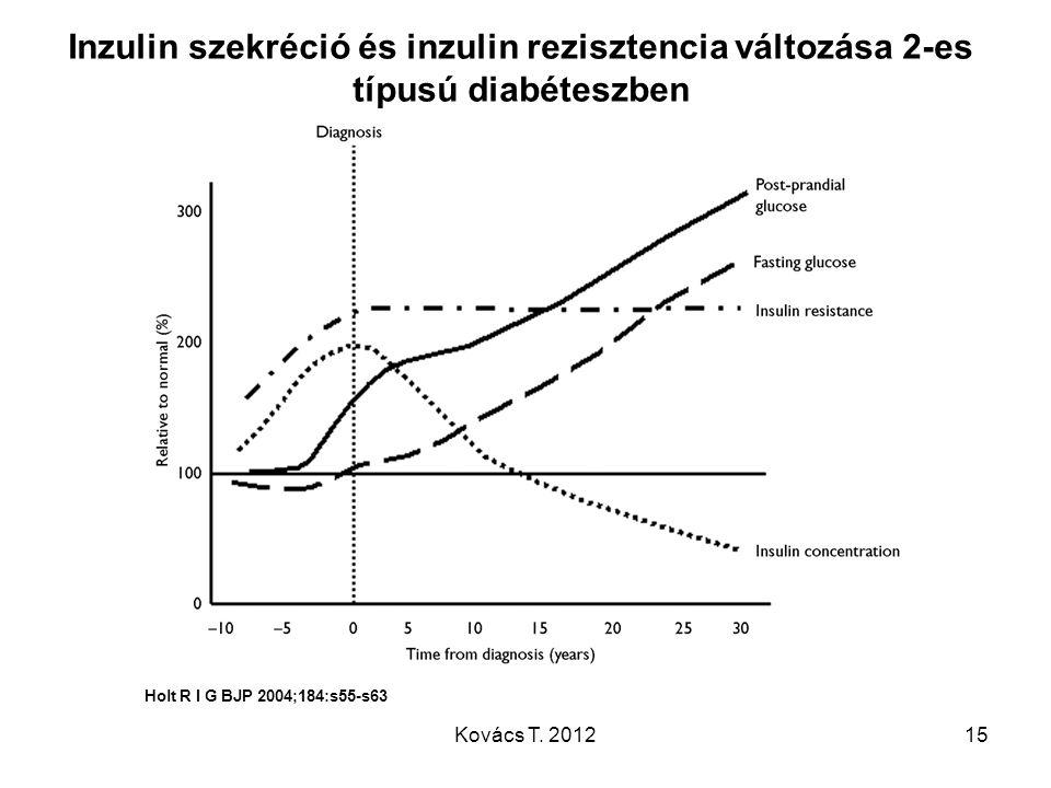 Inzulin szekréció és inzulin rezisztencia változása 2-es típusú diabéteszben Holt R I G BJP 2004;184:s55-s63 15Kovács T. 2012