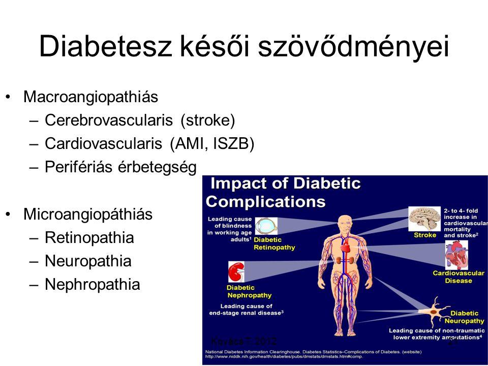 Diabetesz késői szövődményei Macroangiopathiás –Cerebrovascularis (stroke) –Cardiovascularis (AMI, ISZB) –Perifériás érbetegség Microangiopáthiás –Ret