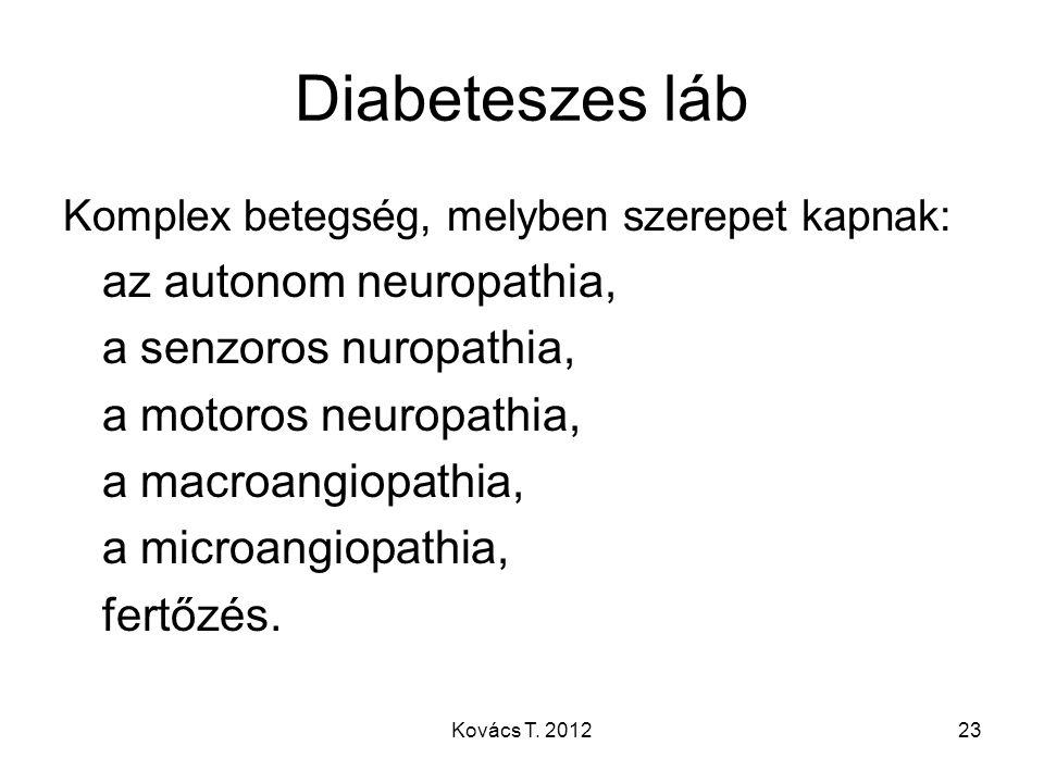 Diabeteszes láb Komplex betegség, melyben szerepet kapnak: az autonom neuropathia, a senzoros nuropathia, a motoros neuropathia, a macroangiopathia, a