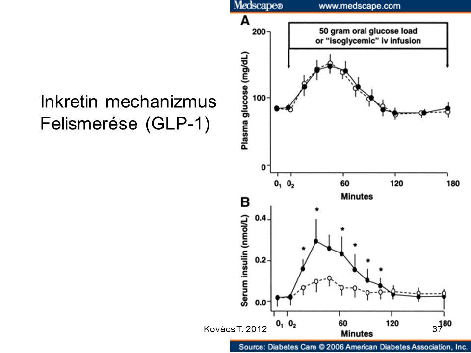 Inkretin mechanizmus Felismerése (GLP-1) 37Kovács T. 2012