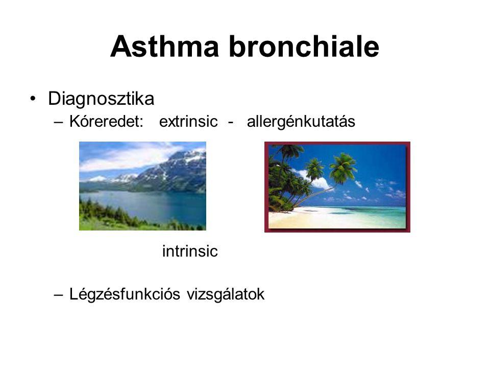 Asthma bronchiale Diagnosztika –Kóreredet: extrinsic - allergénkutatás intrinsic –Légzésfunkciós vizsgálatok