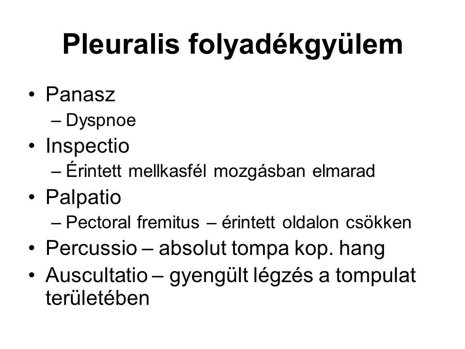 Pleuralis folyadékgyülem Panasz –Dyspnoe Inspectio –Érintett mellkasfél mozgásban elmarad Palpatio –Pectoral fremitus – érintett oldalon csökken Percu