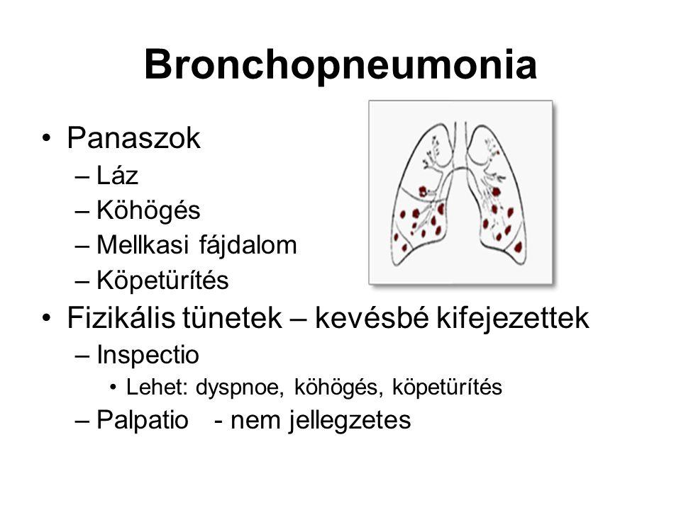 Bronchopneumonia Panaszok –Láz –Köhögés –Mellkasi fájdalom –Köpetürítés Fizikális tünetek – kevésbé kifejezettek –Inspectio Lehet: dyspnoe, köhögés, k