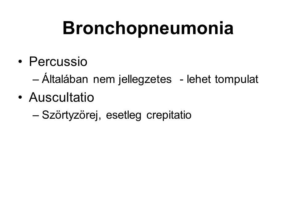 Bronchopneumonia Percussio –Általában nem jellegzetes - lehet tompulat Auscultatio –Szörtyzörej, esetleg crepitatio