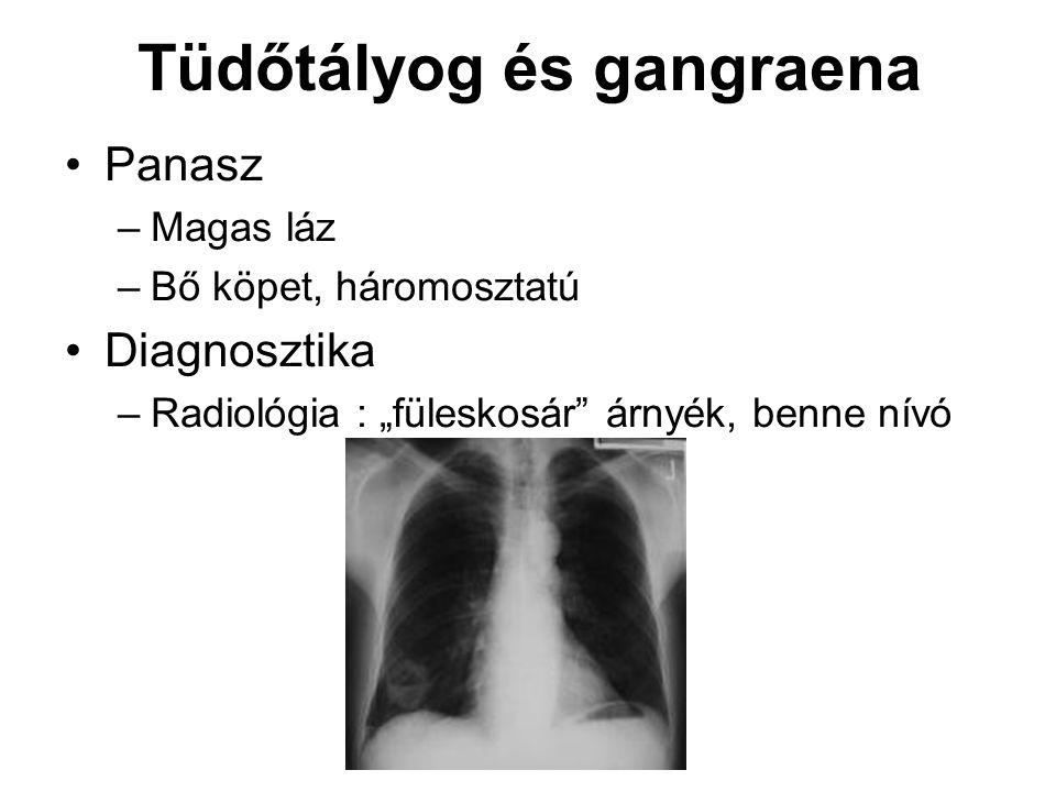 """Tüdőtályog és gangraena Panasz –Magas láz –Bő köpet, háromosztatú Diagnosztika –Radiológia : """"füleskosár"""" árnyék, benne nívó"""