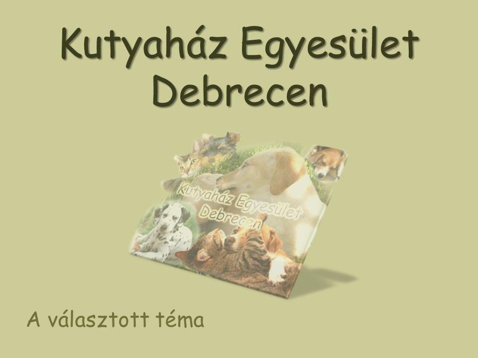 Kutyaház Egyesület Debrecen A választott téma