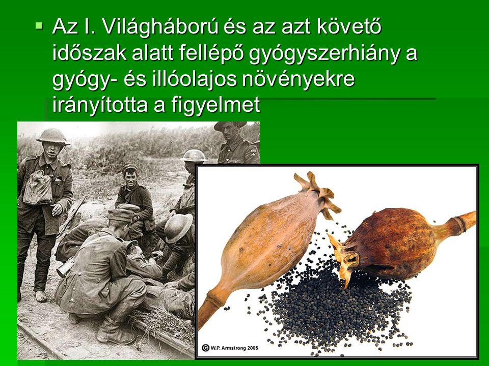 AAAAz I. Világháború és az azt követő időszak alatt fellépő gyógyszerhiány a gyógy- és illóolajos növényekre irányította a figyelmet