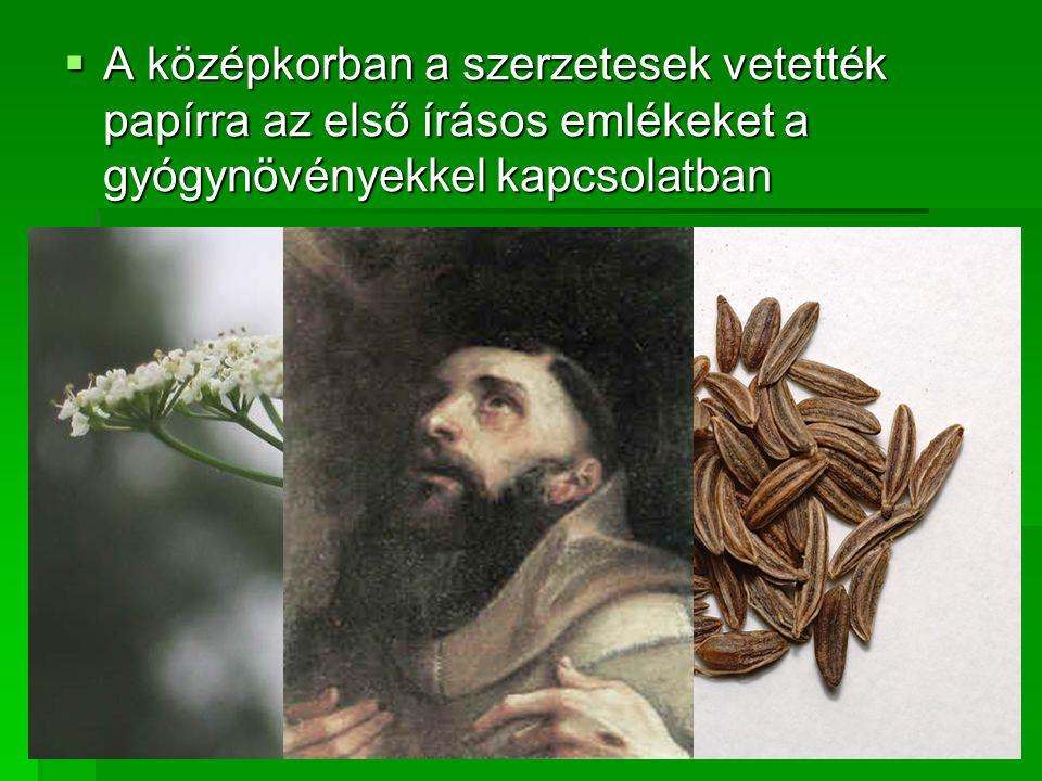 AAAA középkorban a szerzetesek vetették papírra az első írásos emlékeket a gyógynövényekkel kapcsolatban