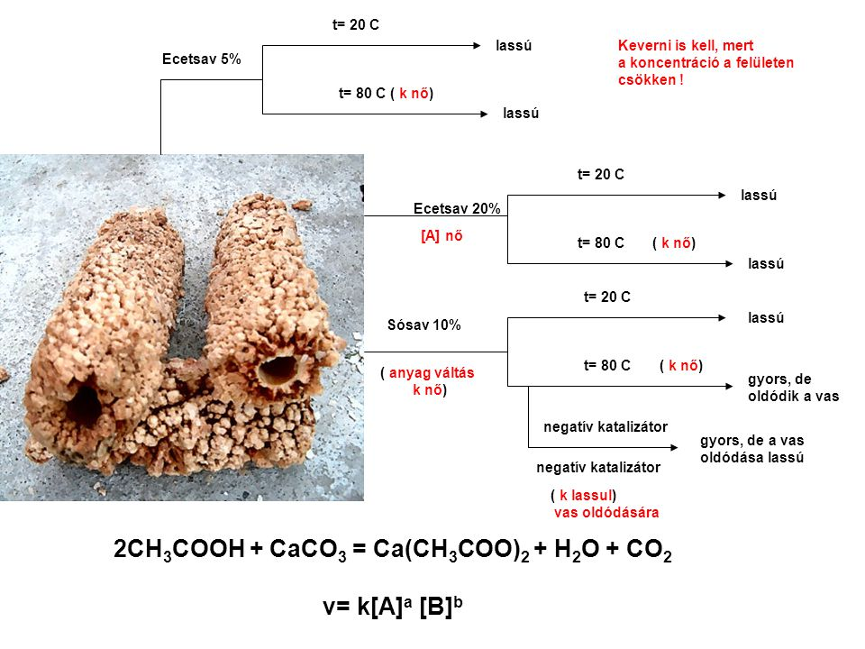 2CH 3 COOH + CaCO 3 = Ca(CH 3 COO) 2 + H 2 O + CO 2 v= k[A] a [B] b Ecetsav 5% [A] nő Sósav 10% t= 20 C gyors, de oldódik a vas t= 80 C ( k nő) t= 80