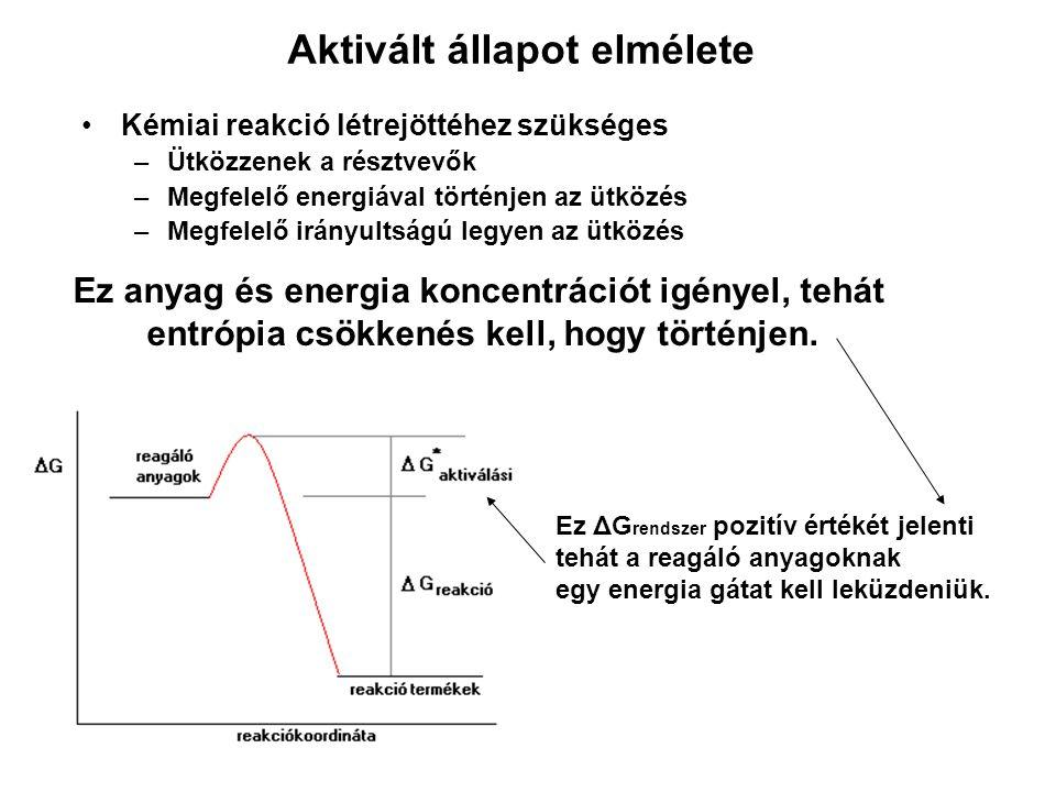Reakciók molekularitása Monomolekuláris reakciók A ----------  termékek Bimolekuláris reakciók A + A ----------  termékek A + B ----------  termékek Trimolekuláris reakciók A + A + A ----------  termékek A + A + B ----------  termékek A + C + B ----------  termékek Tovább nem folytatható, mivel nincs gyakorlati valószínűsége, hogy négy molekula egyidejűleg hatásosan ütközzön.