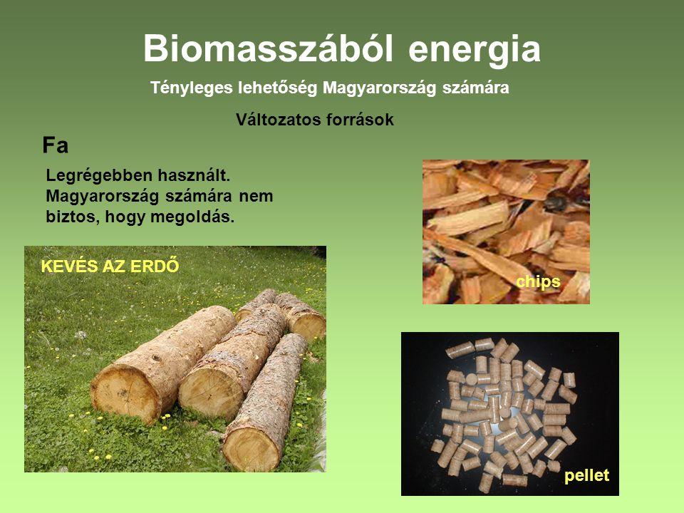 Biomasszából energia Tényleges lehetőség Magyarország számára Változatos források Fa Legrégebben használt. Magyarország számára nem biztos, hogy megol
