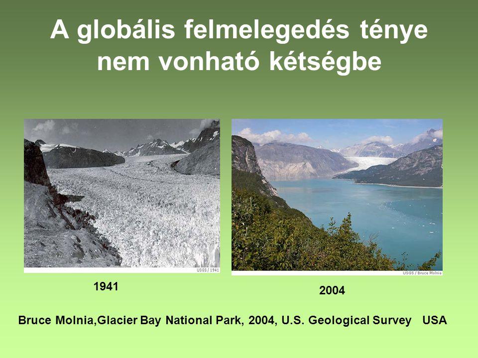 A globális felmelegedés ténye nem vonható kétségbe 1941 2004 Bruce Molnia,Glacier Bay National Park, 2004, U.S. Geological Survey USA