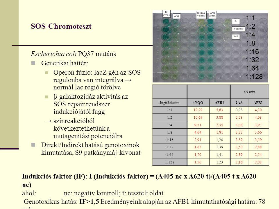SOS-Chromoteszt Escherichia coli PQ37 mutáns Genetikai háttér: Operon fúzió: lacZ gén az SOS regulonba van integrálva → normál lac régió törölve β-galaktozidáz aktivitás az SOS repair rendszer indukciójától függ → színreakcióból következtethetünk a mutagenitási potenciálra Direkt/Indirekt hatású genotoxinok kimutatása, S9 patkánymáj-kivonat Indukciós faktor (IF): I (Indukciós faktor) = (A405 nc x A620 t)/(A405 t x A620 nc) ahol:nc: negatív kontroll; t: tesztelt oldat Genotoxikus hatás: IF>1,5 Eredményeink alapján az AFB1 kimutathatósági határa: 78 ppb 1:1 1:2 1:4 1:8 1:16 1:32 1:64 1:128 S9 mix hígítási szint4NQOAFB12AAAFB1 1:110,795,630,984,30 1:210,693,882,234,03 1:49,512,353,083,97 1:84,641,813,323,66 1:162,911,203,59 1:321,651,393,502,88 1:641,701,412,892,54 1:1281,501,232,162,01