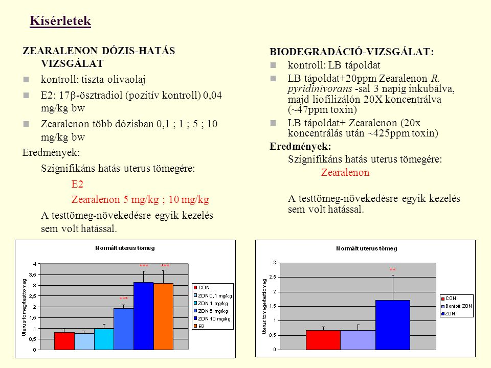 Kísérletek ZEARALENON DÓZIS-HATÁS VIZSGÁLAT kontroll: tiszta olivaolaj E2: 17  -ösztradiol (pozitív kontroll) 0,04 mg/kg bw Zearalenon több dózisban 0,1 ; 1 ; 5 ; 10 mg/kg bw Eredmények: Szignifikáns hatás uterus tömegére: E2 Zearalenon 5 mg/kg ; 10 mg/kg A testtömeg-növekedésre egyik kezelés sem volt hatással.