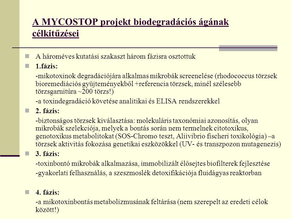 A MYCOSTOP projekt biodegradációs ágának célkitűzései A hároméves kutatási szakaszt három fázisra osztottuk 1.fázis: -mikotoxinok degradációjára alkalmas mikrobák screenelése (rhodococcus törzsek bioremediációs gyűjteményekből +referencia törzsek, minél szélesebb törzsgarnitúra ~200 törzs!) -a toxindegradáció követése analitikai és ELISA rendszerekkel 2.
