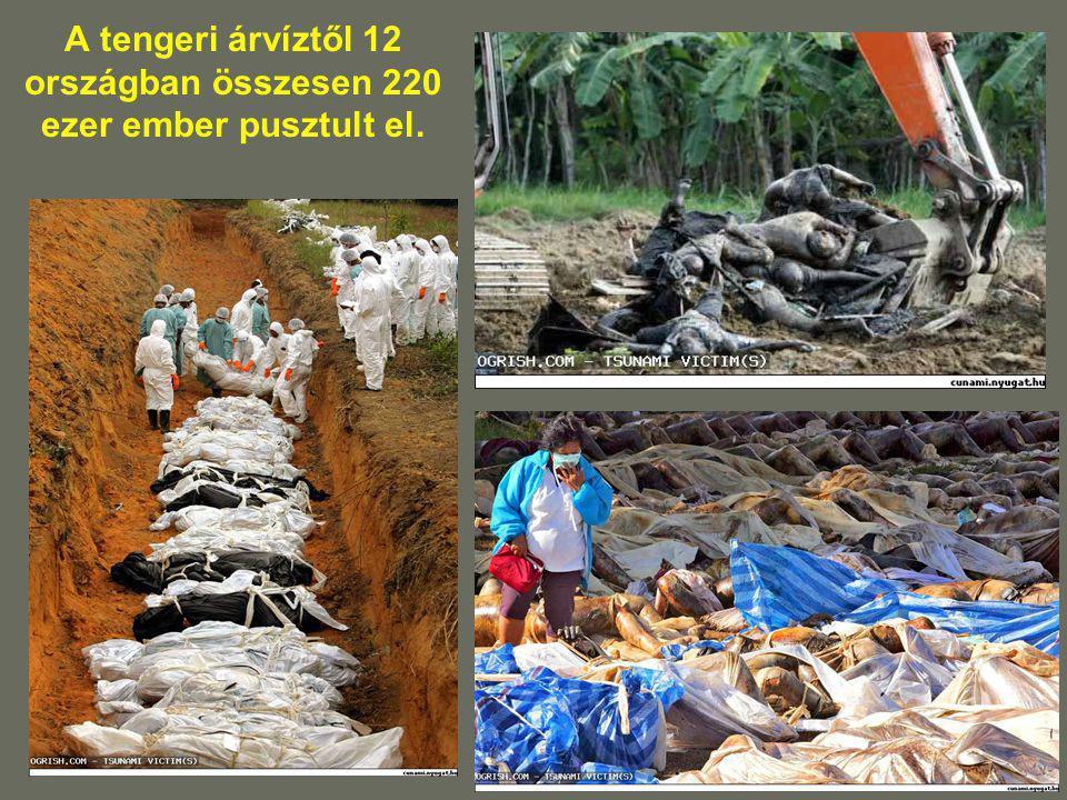 A tengeri árvíztől 12 országban összesen 220 ezer ember pusztult el.