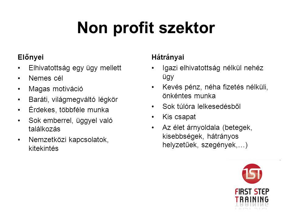 Non profit szektor Előnyei Elhivatottság egy ügy mellett Nemes cél Magas motiváció Baráti, világmegváltó légkör Érdekes, többféle munka Sok emberrel,