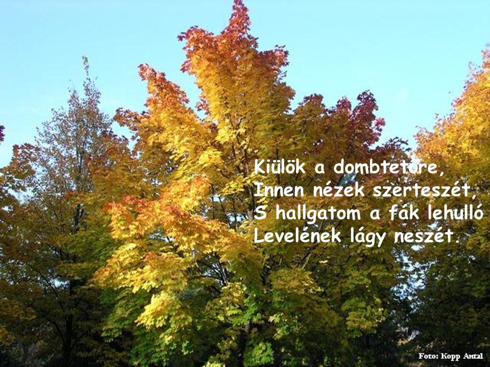 Kiülök a dombtetőre, Innen nézek szerteszét, S hallgatom a fák lehulló Levelének lágy neszét.