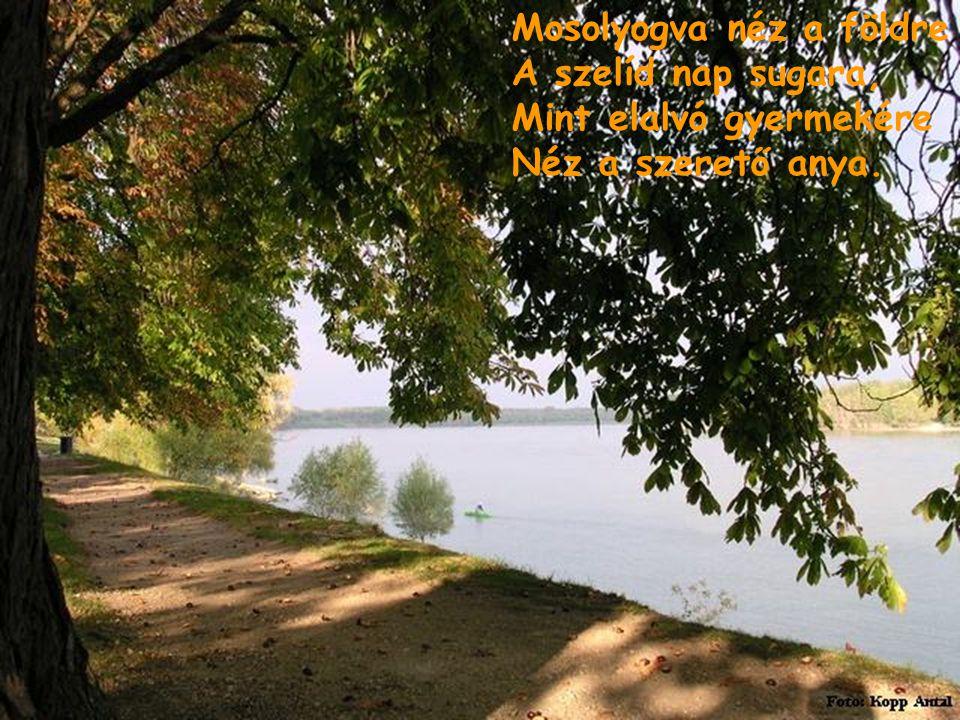 És valóban ősszel a föld Csak elalszik, nem hal meg; Szeméből is látszik, hogy csak Álmos ő, de nem beteg.