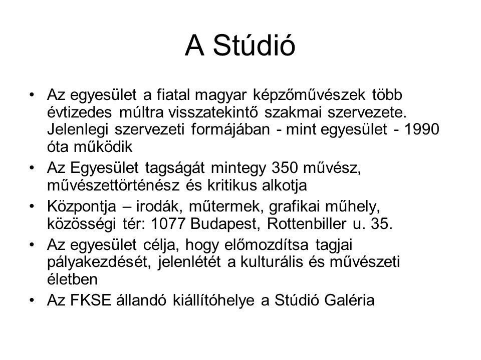 Az egyesület a fiatal magyar képzőművészek több évtizedes múltra visszatekintő szakmai szervezete.