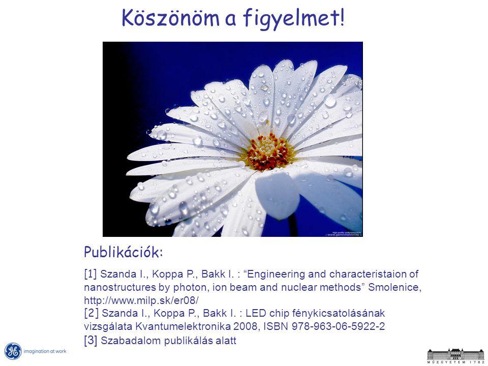 Köszönöm a figyelmet.Publikációk: [1] Szanda I., Koppa P., Bakk I.