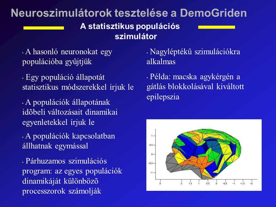 Neuroszimulátorok tesztelése a DemoGriden A statisztikus populációs szimulátor A hasonló neuronokat egy populációba gyûjtjük Egy populáció állapotát statisztikus módszerekkel írjuk le A populációk állapotának idõbeli változásait dinamikai egyenletekkel írjuk le A populációk kapcsolatban állhatnak egymással Párhuzamos szimulációs program: az egyes populációk dinamikáját különbözõ processzorok számolják Nagyléptékû szimulációkra alkalmas Példa: macska agykérgén a gátlás blokkolásával kiváltott epilepszia