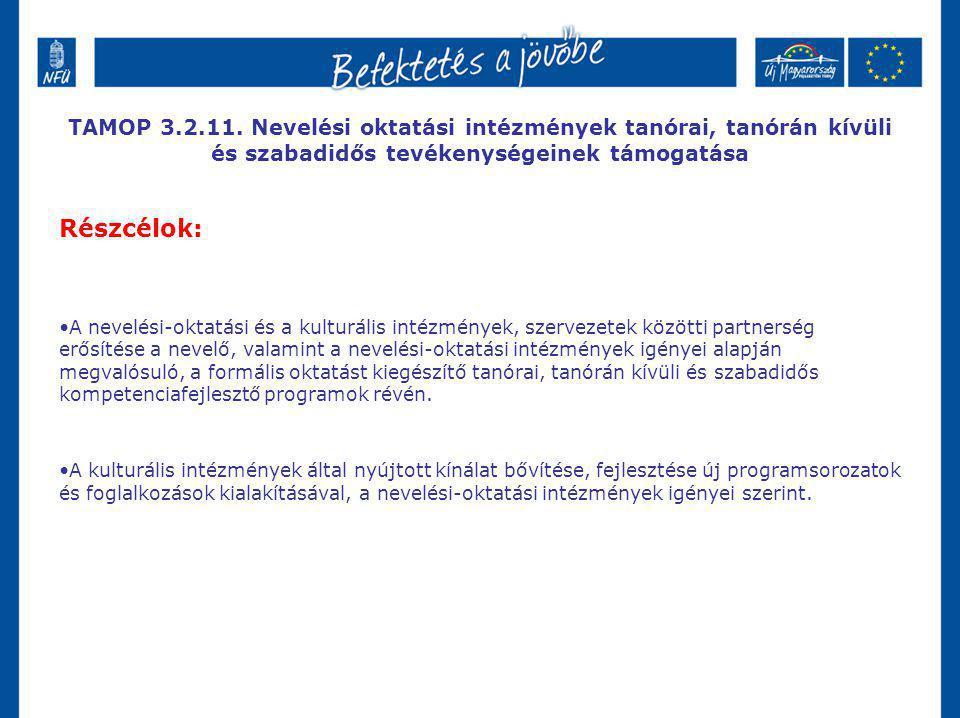 TAMOP 3.2.11. Nevelési oktatási intézmények tanórai, tanórán kívüli és szabadidős tevékenységeinek támogatása Részcélok: A nevelési-oktatási és a kult