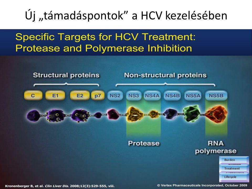 """Burden Treatment Lifecycle Új """"támadáspontok"""" a HCV kezelésében"""