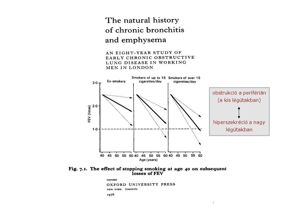 endogen oxidativ stressz (ROS) környezeti oxidativ stressz (ROS) DNS-károsodás kináz-aktiváció (MAPK, PI13K NFκB aktiváció a fehérjék oxidációja az öregedést akadályozó molekulák csökkenése (sirtuin,HDAC) telomer-rövidülés gyulladás szerkezeti változás magas karcinóma-kockázat sejthalál normális, szenilis tüdő gyorsan öregedő, COPD-tüdő Az öregedés és a COPD kialakulásának molekuláris mechanizmusai Ito K, Barnes PJ :COPD as a disease of accelerated lung aging Chest 2009: 135: 173-180.