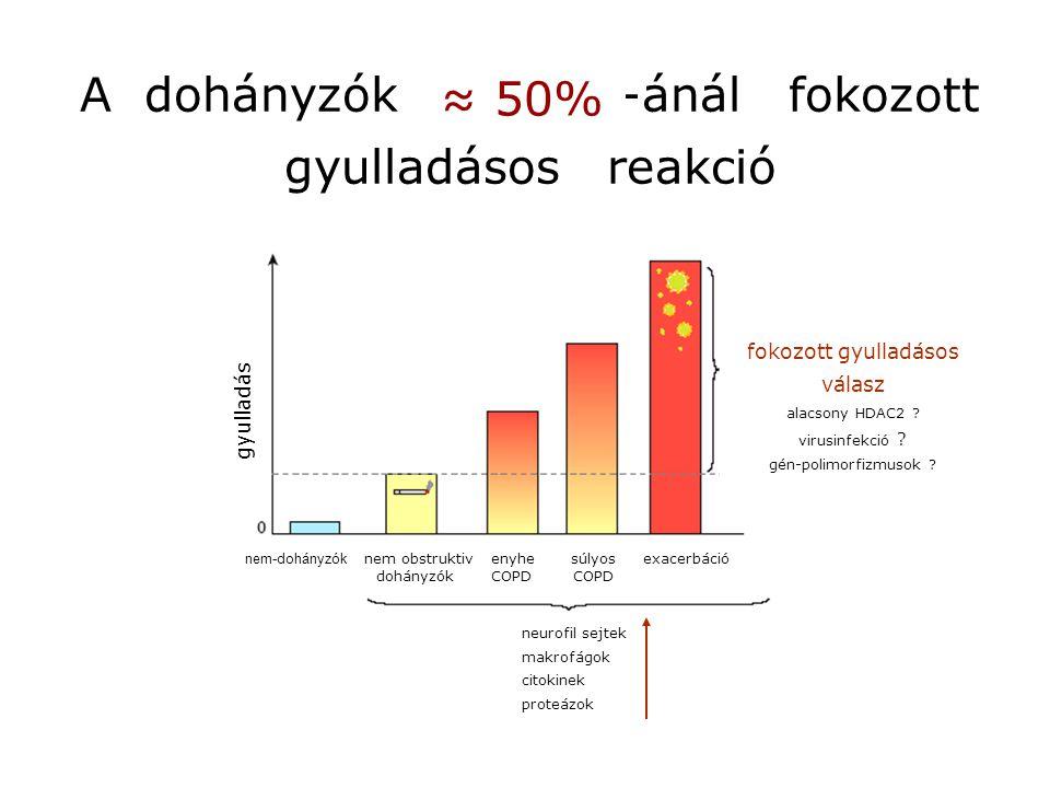 Nagyteljesitményű, multi-parametrikus, betegség-specifikus biomolekuláris mintázatok vizsgálatára alkalmas módszerek: 2D gél-elektroforézis flow cytometry tömegspektrometria microarray platformok Surface Plasmon Resonance (SPR) módszer vérminta plazma sejtek szekretált fehérjék intracelluláris intracelluláris fehérjék mRNA detector lézer az ismert COPD-specifikus fehérje/gén-mintázat a COPD diagnózisa (fenotipus-specifikus) ?