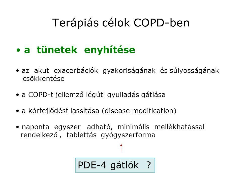 a tünetek enyhítése az akut exacerbációk gyakoriságának és súlyosságának csökkentése a COPD-t jellemző légúti gyulladás gátlása a kórfejlődést lassítá