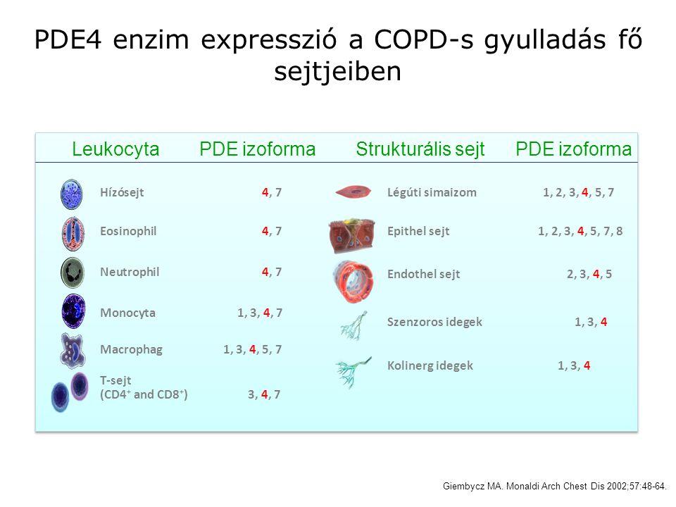 PDE4 enzim expresszió a COPD-s gyulladás fő sejtjeiben Leukocyta PDE izoforma Hízósejt 4, 7 Eosinophil 4, 7 Neutrophil 4, 7 Monocyta 1, 3, 4, 7 Macrop