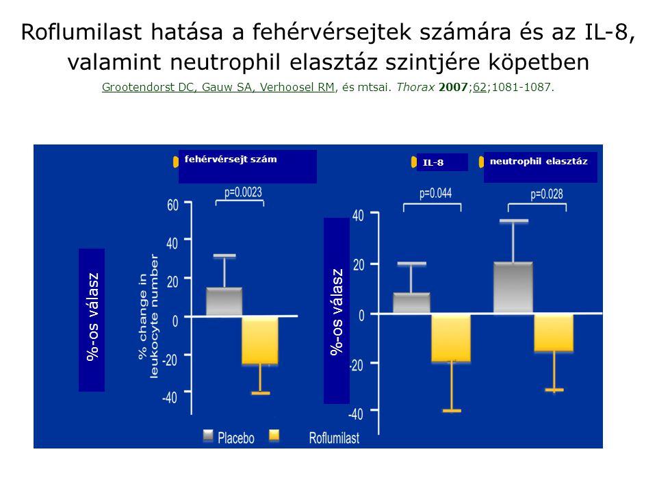 Roflumilast hatása a fehérvérsejtek számára és az IL-8, valamint neutrophil elasztáz szintjére köpetben Grootendorst DC, Gauw SA, Verhoosel RM, és mts