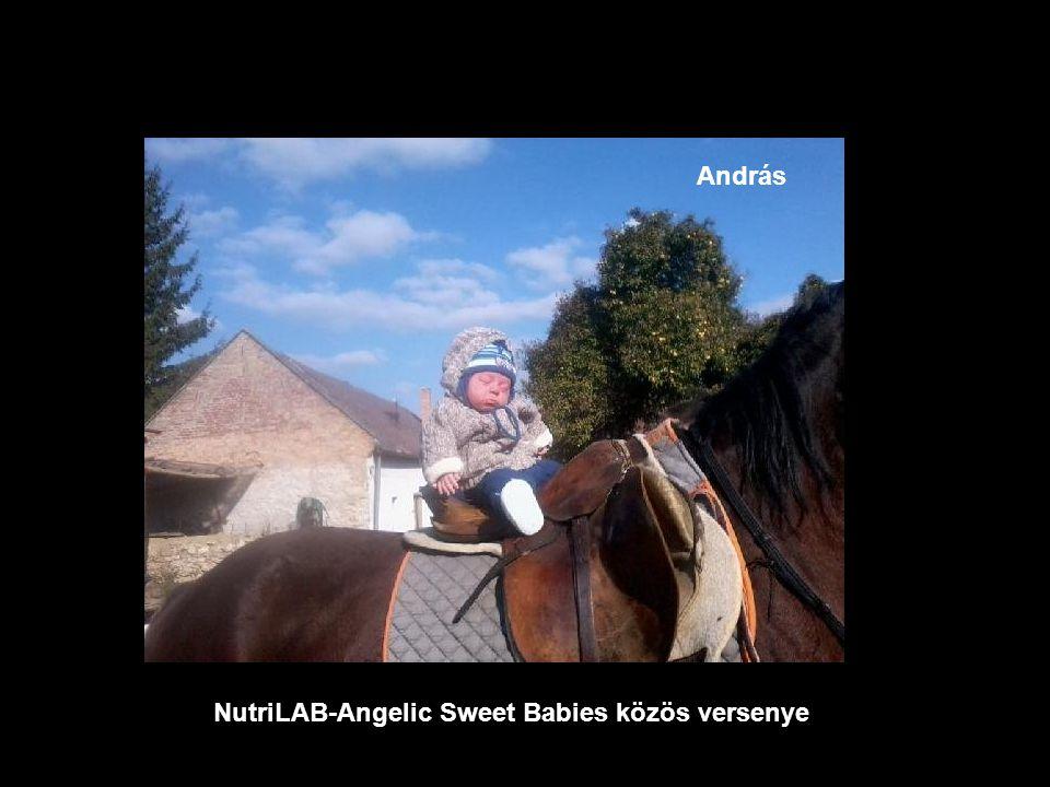 NutriLAB-Angelic Sweet Babies közös versenye Barnabás