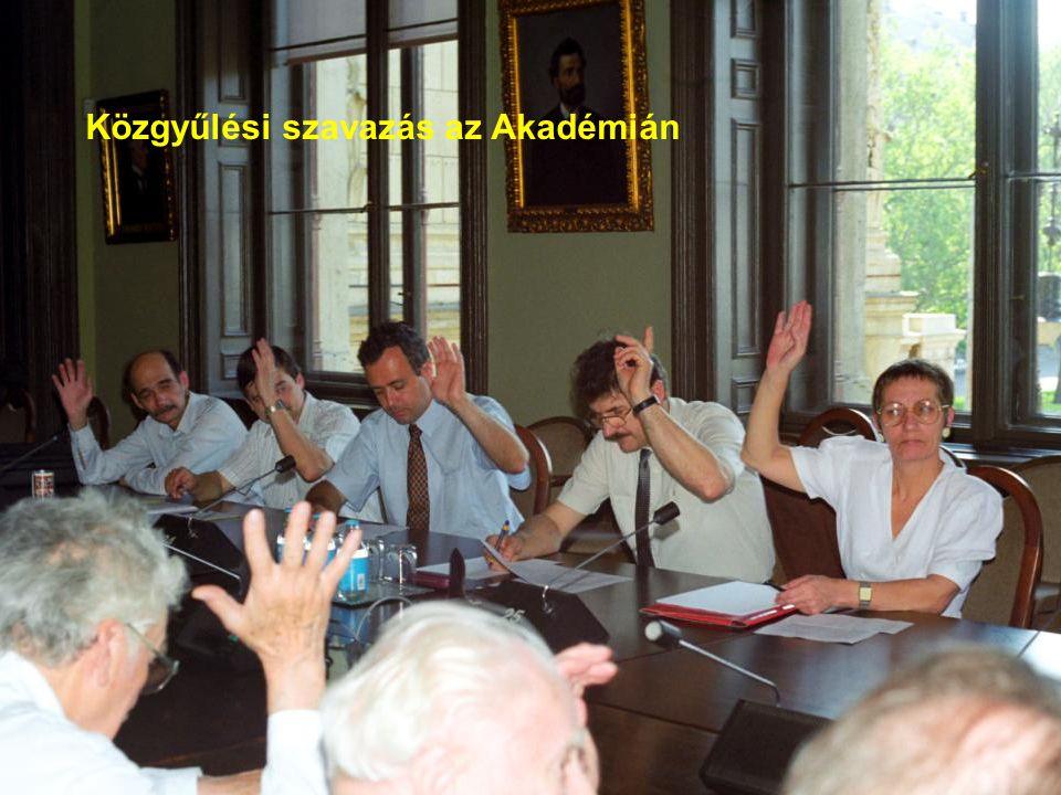 Közgyűlési szavazás az Akadémián
