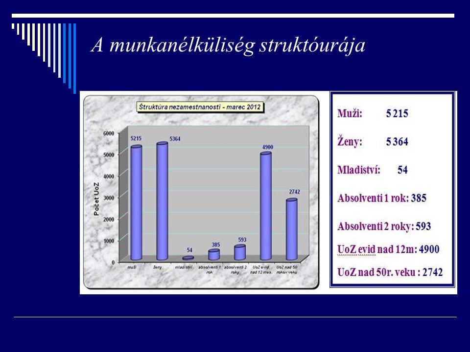 Abszolvensek iskolák szerint (január 2004)